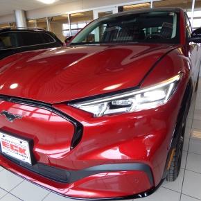 Ford Mustang Mach-E 2021: Caballoelectrocutado.